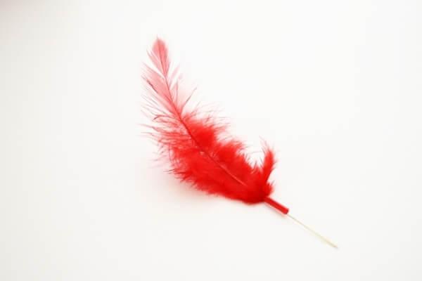 募金すると貰える赤い羽根