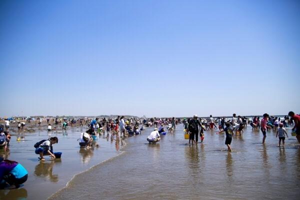 潮干狩りをする大勢の人々