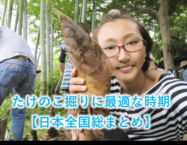 たけのこ掘りに最適な時期【日本全国総まとめ】
