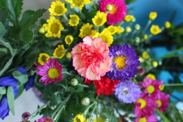 色んな花を集めた盆花