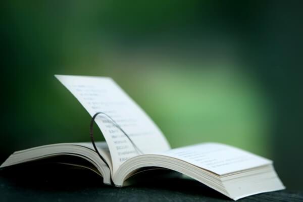 ページが風にめくれる本