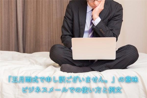「五月雨式で申し訳ございません」の意味 ビジネスメールでの使い方と例文