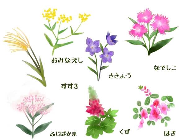 秋の七草一覧表